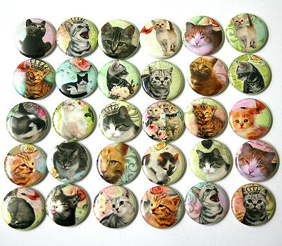 CUTE KAWAII CATS One Inch BADGES x 30 Button Pins Set Lot Kittens Cats 25mm 1""