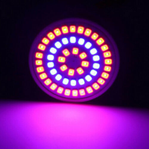 3W//4W//5W E27//GU10//MR16 LED Rote Blaue Blume Pflanze Wachstumslampe Glühlampe