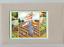 thumbnail 1 - Mary-Engelbreit-Little-Girl-Gardening-Blank-Notecard