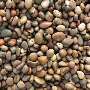 Scottish Pebbles Decorative Granite 875 Kg Landscaping Pebbles