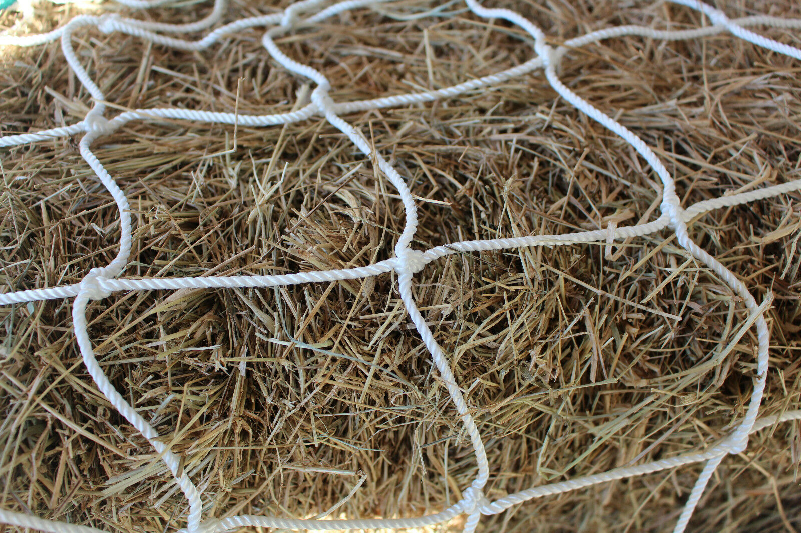 Horse Hay Round Bale Net Feeder 4   Save    Eliminates Waste Fits 6' x 5' Bales  credit guarantee