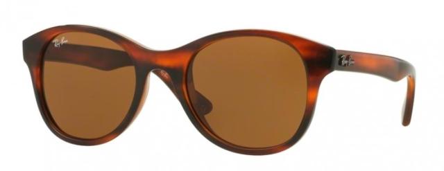 fea1ed5633 Brand New Ray-Ban RB4203 820 73 Havana Brown   Brown Lens Sunglasses -