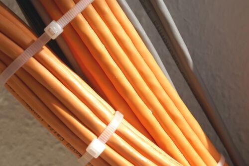 6 mm 100 ST Serre-câbles befestigunselemente Pare-vue filet fixation 200mmx3