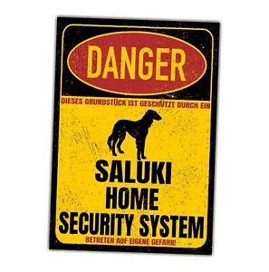 Saluki Tazi Windhund Schild Danger Security System Türschild Hundeschild Warnsch