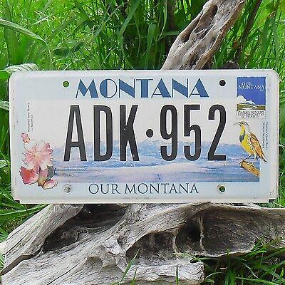 adk952 Authentisch Kennzeichen Von Montana Usa Nummernschild Seien Sie In Geldangelegenheiten Schlau
