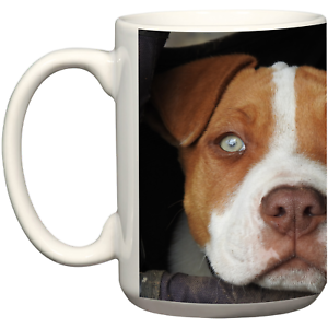 Image Is Loading Pitbull Dog Coffee Mug Pet Accessories Christmas Birthday