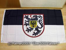 Fahnen Flagge Landau in der Pfalz - 90 x 150 cm