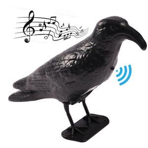 Corvo-Dissuasore-Piccioni-con-Suoni-Sensore-Movimento-Repellente-Colombi-Uccelli