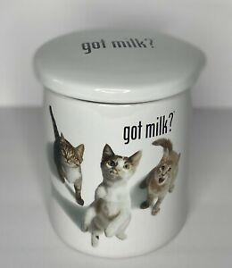 Ceramic Cat Treat Cookie Jar Sealable Kitchen Canister