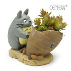 Studio Ghibli My Neighbor Totoro Figure Radish Planter Flower Pot Succulent