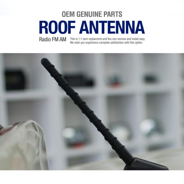 Oem Genuine Parts Roof Antenna Radio Am Fm For Kia 20072012 Rondo Rhebay: 2007 Kia Rondo Radio Antenna At Gmaili.net