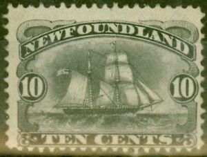 Newfoundland 1887 10c Black SG54 Fine MNH Regummed