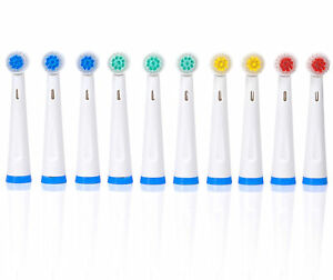Wellness-WE3700BH-10-Replacement-Brush-Heads-for-WE3700-Oscillating-Toothbrush