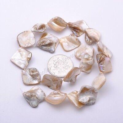 "1Strand White Shell MOP Freeform Shape Gemstone Charms Loose Beads 15/"" 15-25MM"