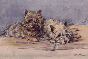 Scottish Terrier Dog On Wall 1930/'s by Lucy Dawson  LARGE New Blank Note Cards