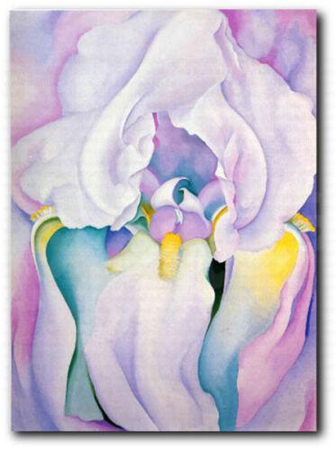 Light of Iris Georgia O/'Keeffe Repro Fine Art Canvas Print Home Wall Decor