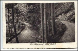 Schwarzatal-Thueringen-Postkarte-1929-gelaufen-Partie-im-Schwarzatal-ab-Werdau