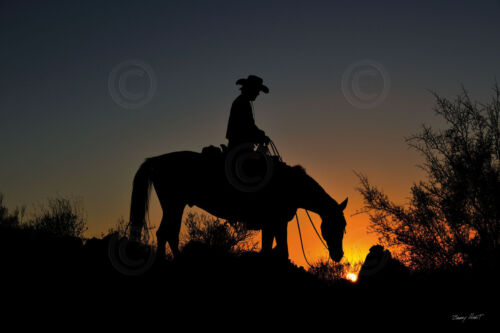 Chasin the Sun by Barry Hart Cowboy Ranch Western Poster 18x26 HORSE ART PRINT