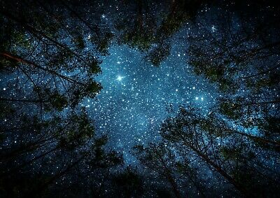 Cool Stars Constellation Poster Size A4 A3 Star Outer Space Poster Gift #8436