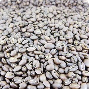 Sulawesi Toraja Far East Origins Fresh Roasted #1 Arabica Gourmet Coffee Beans