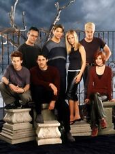 """Buffy The Vampire Slayer Cast Poster Spike and Buffy 16/""""x24/"""""""