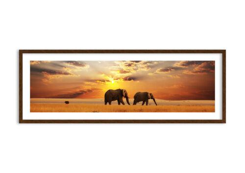 Bild im Rahmen Elefanten Safari Dschungel Busch 3150 DE