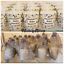 20 x baby shower candles,Elephant theme,Thankyou gifts,Baby shower favours