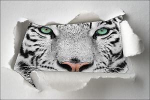 Sticker Trompe l/'oeil papier déchiré déco Yeux tigre  réf 1333
