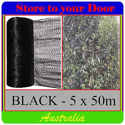 Anti Bird Netting, BLACK 5 x 50m Pest Net / Fruit, Plant, Tree, pond - extruded