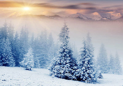Snow Trees Winter Mountains 3D Full Wall Mural Photo Wallpaper Home Decal Decor