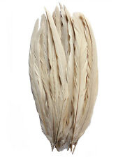 """25 pcs 14-16"""" long Champagne Dyed Rooster COQUE tail Feathers for crafting, NEW"""