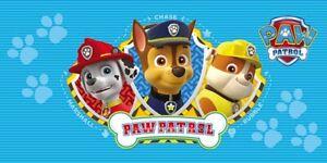 PAW PATROL Strandtuch Kinder Badetuch Nickelodeon Tuch 70x140 cm Neu Sommer