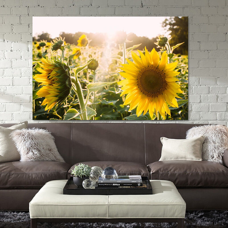 3D Gelbe sonnenBlaumen 532 Fototapeten Wandbild BildTapete Familie AJSTORE DE