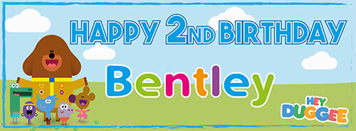 800 x 297mm ANY NAME ANY AGE 2 PERSONALISED  HEY DUGGEE BIRTHDAY BANNERS