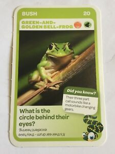 Woolworths /</<AUSSIE ANIMALS/>/> Card 20//108 BUSH Green-and-Golden Bell-Frog