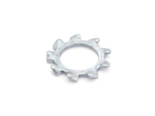 acciaio Zincato DIN 6797 denti disco esterno RONCOLI