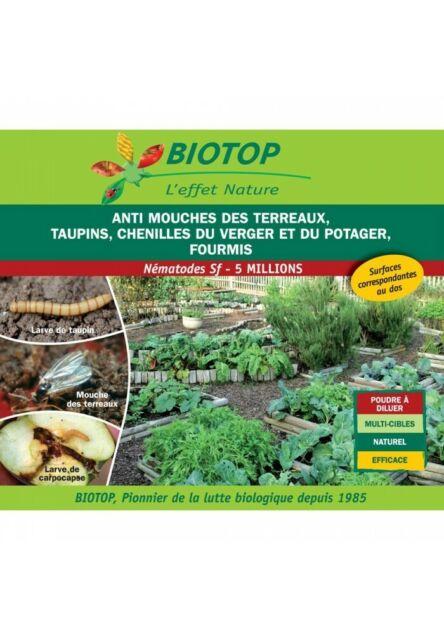 Nematode Sf anti mouche terreaux, taupins,  chenilles, fourmis 5M pour 10m2