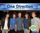 One Direction:: Popular Boy Band by Lucas Diver (Hardback, 2015)