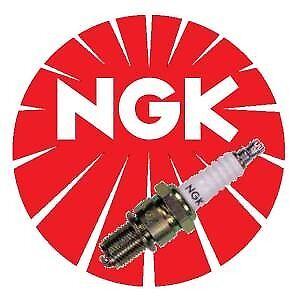 Zuendkerze-NGK-B8-EGV