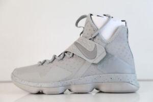 cf22ce1cce8f1 Nike Lebron XIV 14 Mens 10-14 Silver White Reflective Grey James ...