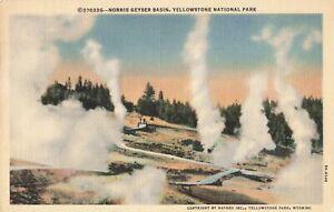 Postcard-Norris-Geyser-Basin-Yellowstone-Park-Wyoming