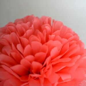 Koral Farbe koralle farbe seidenpapier pompon pompoms wandbehang ebay