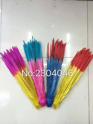 Wholesale 50-100pcs beautiful two color Pheasants feathers 16-22 inch / 40-55 cm