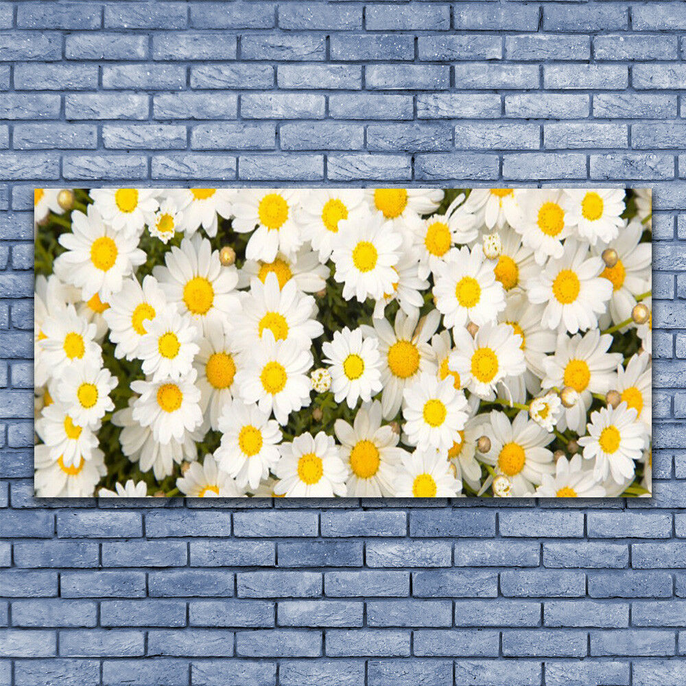Glass Glass Glass print Wall art 140x70 Image Picture Daisy Floral 65adab