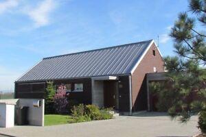 Dachplatten-Profilbleche-Dachpaneele-mit-Stehfalz-DP-510-Preis-m2-1-Wahl