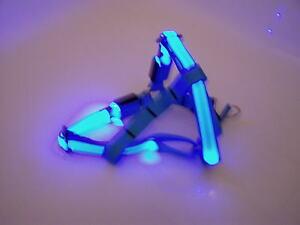 LED-Hundegeschirr-Gr-M-Sicherheitshalsband-Hunde-Leuchtband-Geschirr-Leine-NEU