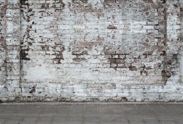 7 X 5 PIES SHABBY BRICK WALL BACKDROP VINTAGE FOTOGRAFÍA FONDO FOTO FOTO VINILO