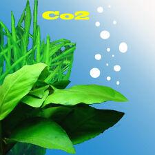 Kit IMPIANTO Co2 per piante acquario