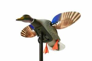 Duck-Decoy-Mojo-Elite-Series-Mini-Mallard-Battery-Spinning-Wing-Decoy