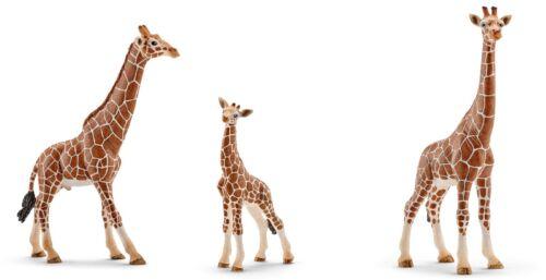 14751 3 piezas jirafas familia jirafa Schleich nº 14749 nuevo! 14750
